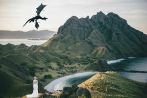 Bride of dragaons destination weedding in another world