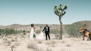 SurReal_wedding_couple_in_desert_dinasour